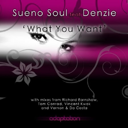 Sueno Soul Feat. Denzie - What You Want (2009)