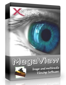 MegaView 12.0.0.301 Portable