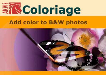 AKVIS Coloriage 7.5.916.7585 for Adobe Photoshop (Business License)